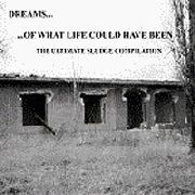 VARIOUS - DREAMS OF WHAT LIFE COULD HAVE BEE