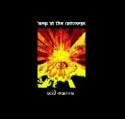 LAMP OF THE UNIVERSE - ACID MANTRA (COL)