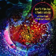 ACID MOTHERS TEMPLE & THE MELTING PARAISO U.F.O. - WAKE TO A NEW DAWN OF ANOTHER ASTRO ERA (2LP)