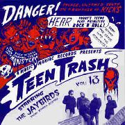 JAYBIRDS - TEEN TRASH VOL. 13