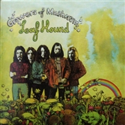 LEAF HOUND - GROWERS OF MUSHROOM