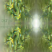 PLANTS - PHOTOSYNTHESIS