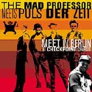 MAD PROFESSOR - MEETS PULZ DER ZEIT