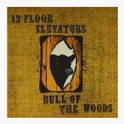13TH FLOOR ELEVATORS - BULL OF THE WOODS (UK/2CD)