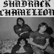 SHADRACK CHAMELEON - SHADRACK CHAMELEON