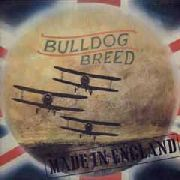 "BULLDOG BREED - MADE IN ENGLAND (+7"")"