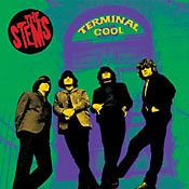 STEMS - TERMINAL COOL: A RETROSPECTIVE...