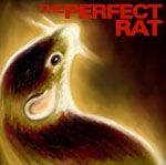 PERFECT RAT - ENDANGERED LANGUAGES
