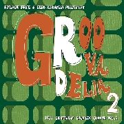 VARIOUS - GROOVADELIA, VOL. 2 (2CD)
