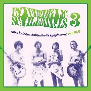 VARIOUS - PSYCHEDELIC SCHLEMIELS, VOL. 3