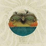TAINT (UK) - ALL BEES TO THE SEA