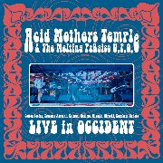 ACID MOTHERS TEMPLE & THE MELTING PARAISO U.F.O. - LIVE IN OCCIDENT