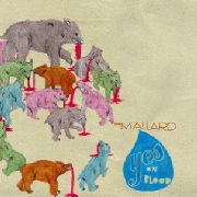 MALLARD - YES ON BLOOD