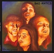 BAD ANTICS - WHERE DID I GO WRONG?