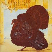 WILD TURKEY - TURKEY: EXPANDED EDITION