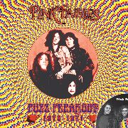 PINK FAIRIES - FUZZ FREAKOUT 1970-1971 (+CD)