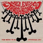 WILD EVEL & THE TRASHBONES - THE MESS I'M IN