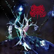 CARDINAL WYRM - BLACK HOLE GODS (BLACK/2LP)