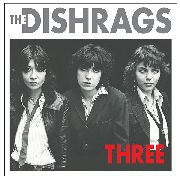 DISHRAGS - THREE
