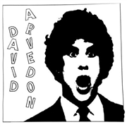 ARVEDON, DAVID - BEST OF DAVID ARVEDON, VOL. 2