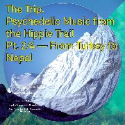 VARIOUS - TRIP 2 PSYCHEDELIC MUSIC FROM THE HIPPIE TRAIL