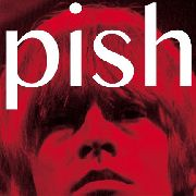 BRIAN JONESTOWN MASSACRE - MINI ALBUM THINGY WINGY