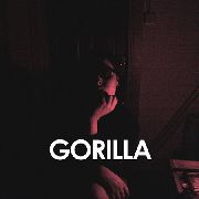 VELVET MORNING - GORILLA