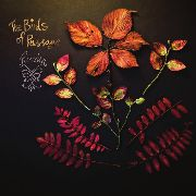BIRDS OF PASSAGE - RUSKA