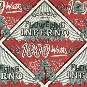 1000 WATTS (2LP) - ·1000 WATTS (2LP)