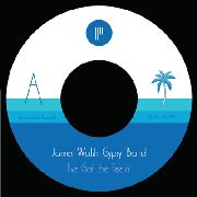WALSH, JAMES -GYPSY BAND- - I'VE GOT THE FEELING/CAVES OF ALTAMIRA