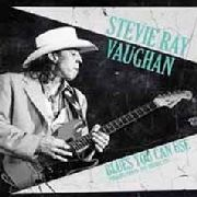 VAUGHAN, STEVIE RAY - BLUES YOU CAN USE (2LP)