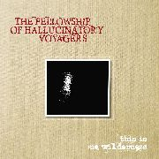 FELLOWSHIP OF HALLUCINATORY VOYAGERS - THIS IS NO WILDERNESS