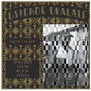 "VARIOUS - USIENDE UKALALE (""DON'T SLEEP"")"