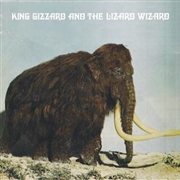 KING GIZZARD & THE LIZARD WIZARD - (UK/FUZZCLUB/DELUXE) POLYGONDWANALAND