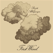 RICOTTI & ALBUQUERQUE - FIRST WIND