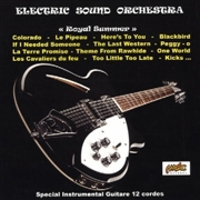 ELECTRIC SOUND ORCHESTRA - ROYAL SUMMER