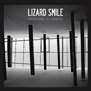 LIZARD SMILE - WANDERING IN MIRRORS