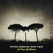 ERSKINE, PETER -NEW TRIO- - IN PRAISE OF SHADOWS