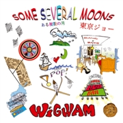 WIGWAM - (BLACK) SOME SEVERAL MOONS (2LP)