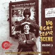 VARIOUS - BIG BEAT CELLAR SCENE, VOL. 3
