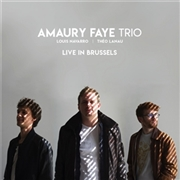 FAYE, AMAURY -TRIO- - LIVE IN BRUSSELS