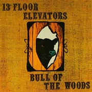 13TH FLOOR ELEVATORS - BULL OF THE WOODS (2CD)