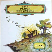 13TH FLOOR ELEVATORS - LIVE