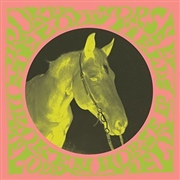 MELODY FIELDS - BROKEN HORSE EP