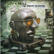 GOV'T MULE - LIFE BEFORE INSANITY (2LP)