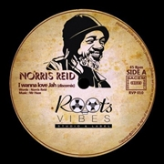 REID, NORRIS/MR HAZE & THE SOA - I WANNA LOVE JAH (DISCOMIX)/MEDITATORS SKANK/DUB