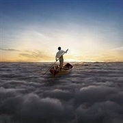 PINK FLOYD - THE ENDLESS RIVER (1000/JIGSAW PUZZLE)